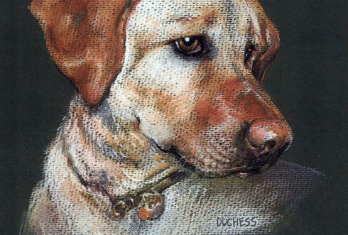 Duchess the Dog Painting